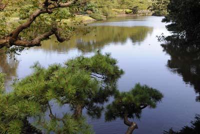 River scene for Nidra