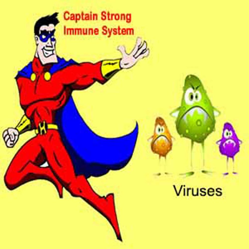 A Strong Immune System – Our Best Defence